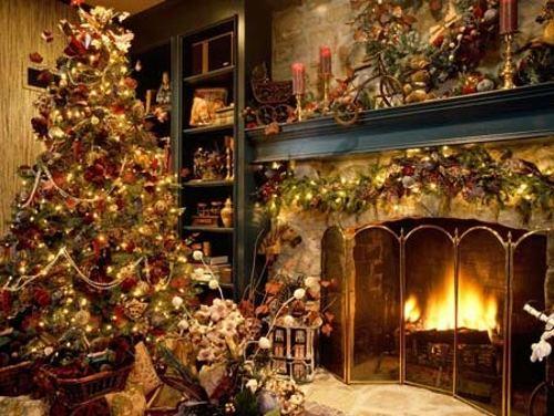 como-cuidar-arbol-navidad-natural-2